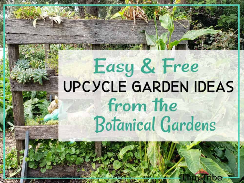 Easy And Free Upcycle Garden Ideas From The Botanical Gardens