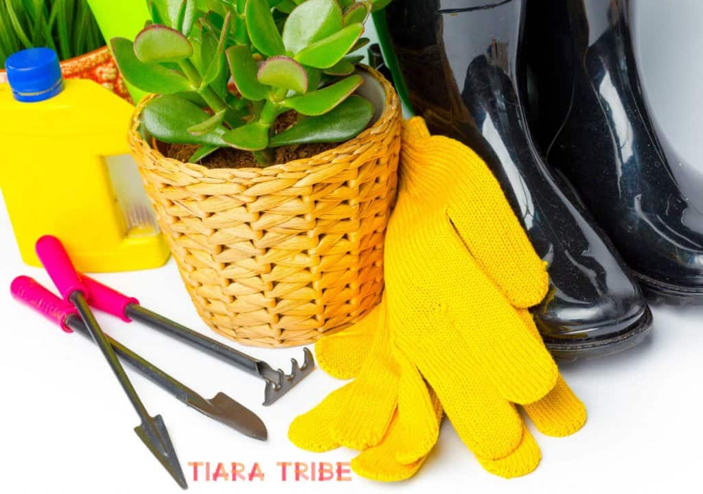 Make money with gardening