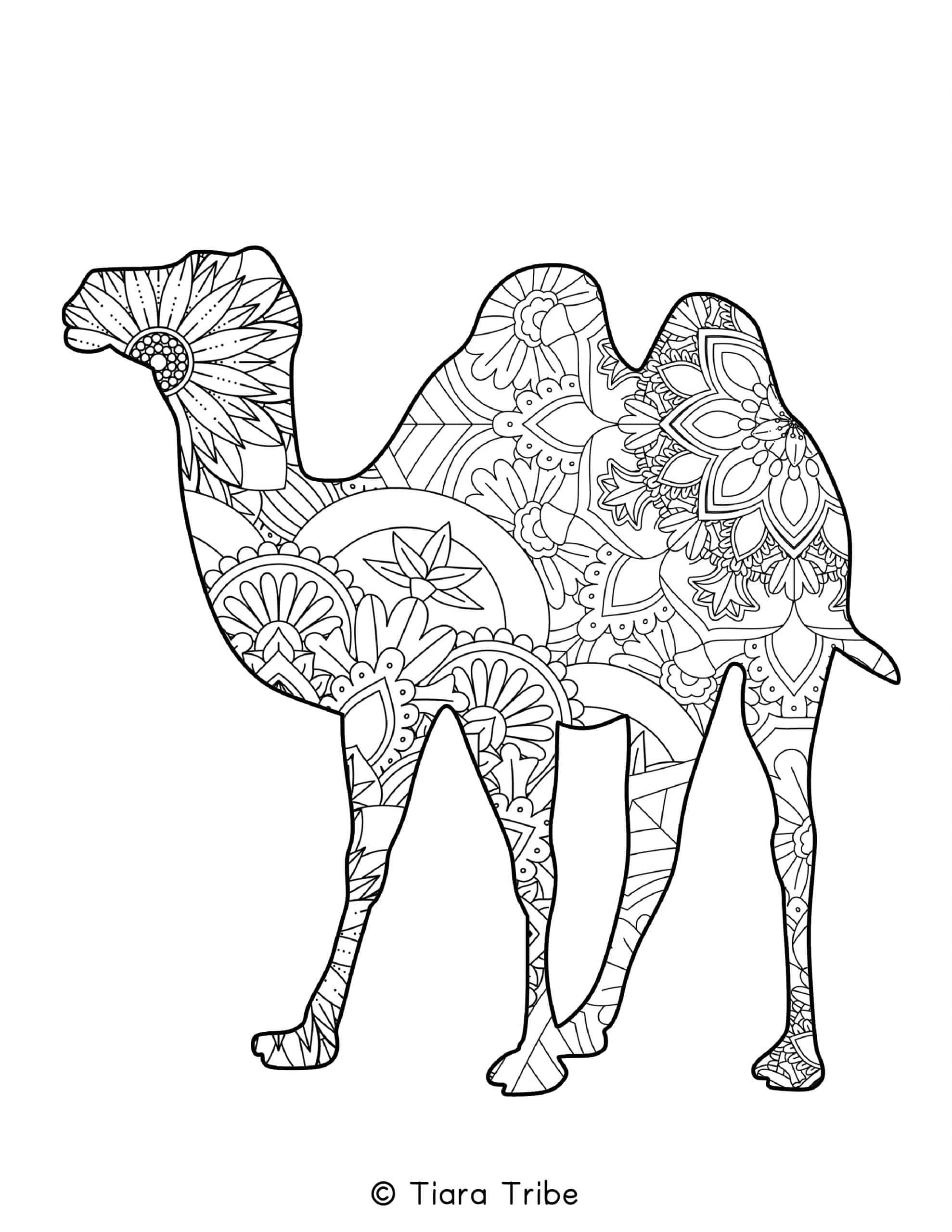 Camel Mandala Coloring Page