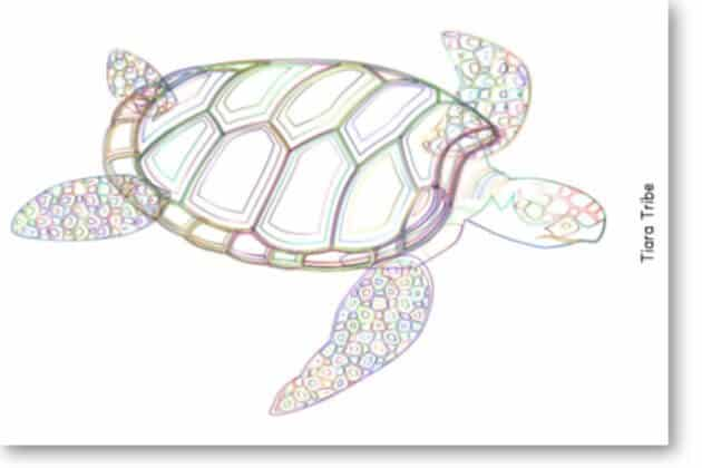 Colorful sea turtle coloring page - Blog