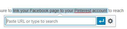PAste in the url in WordPress links