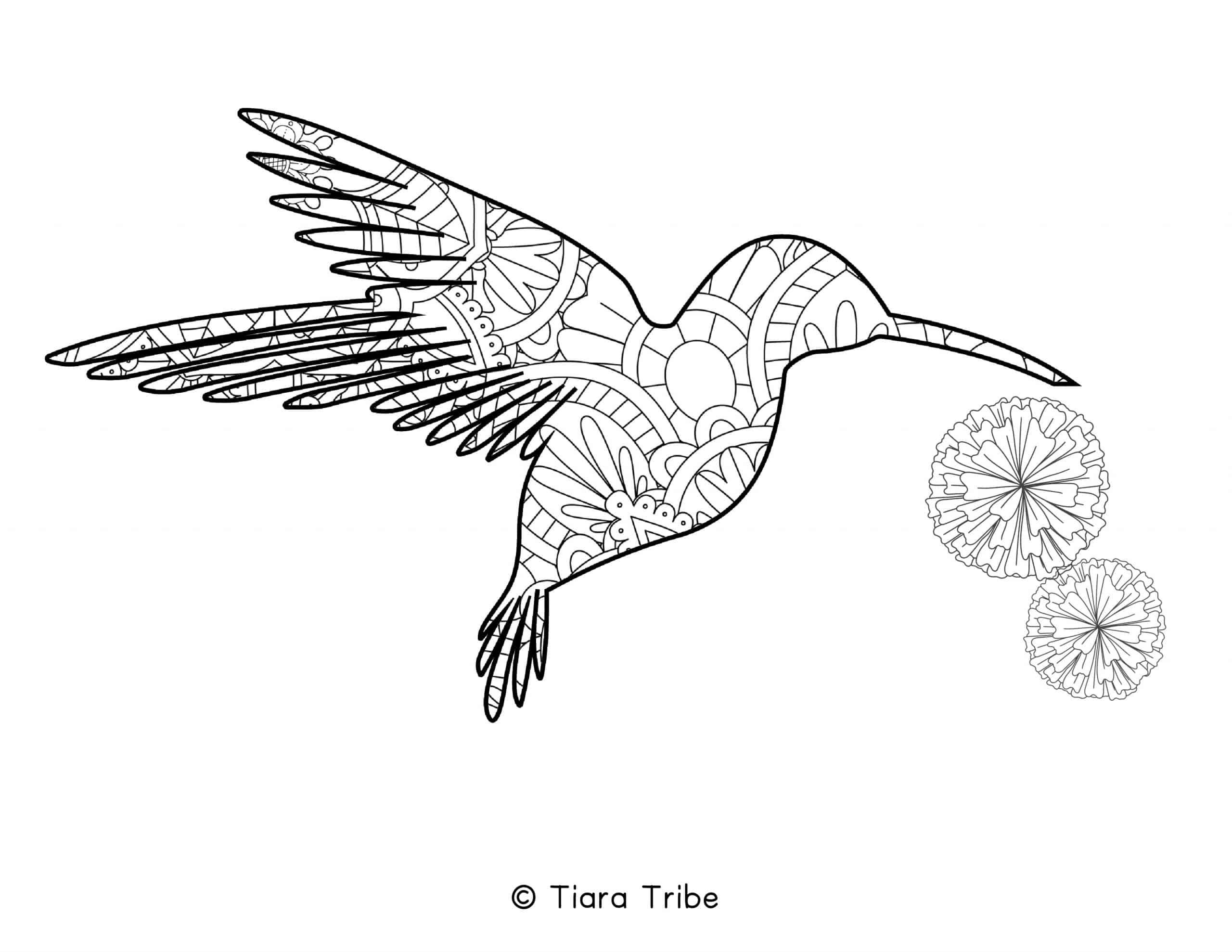 Hummingbird Mandala Coloring Page