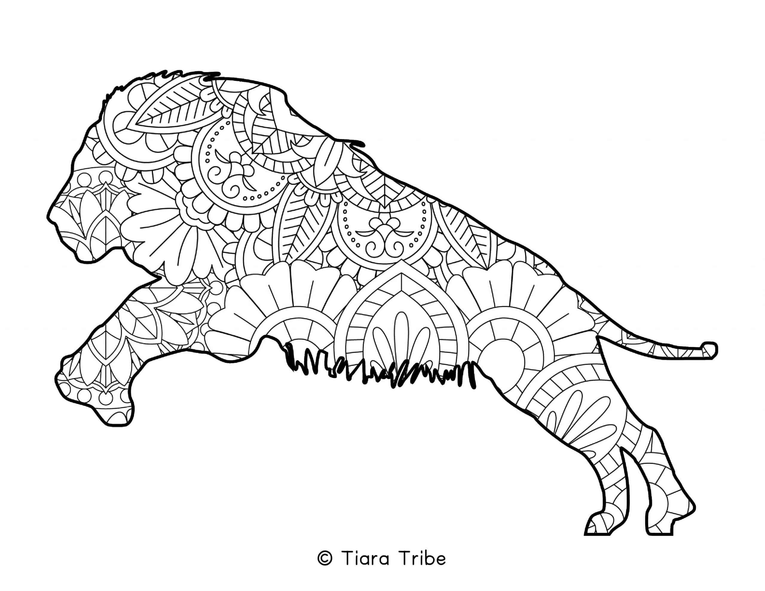 Lion Mandala Coloring Page