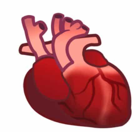 Organ heart emoji