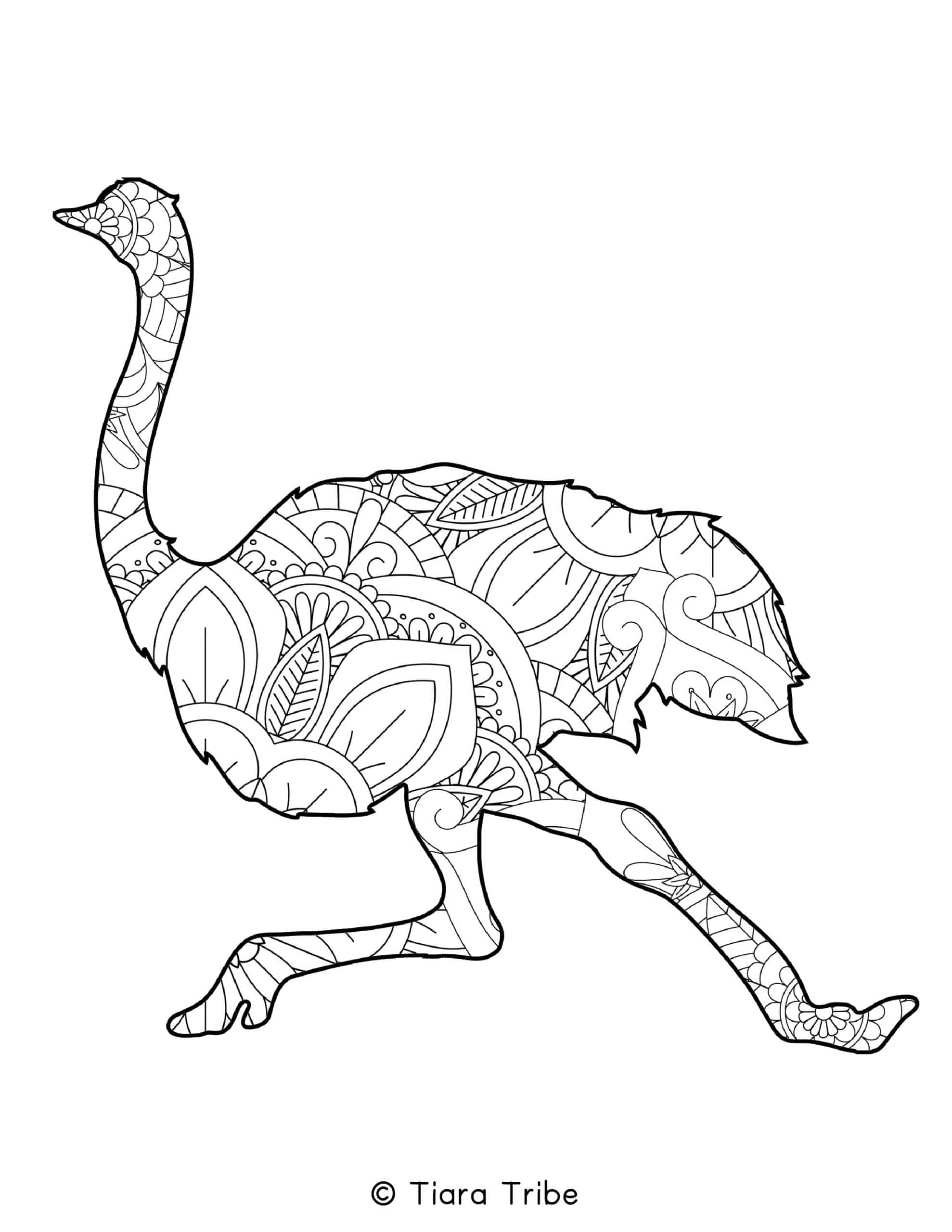 Ostrich Mandala Coloring Page