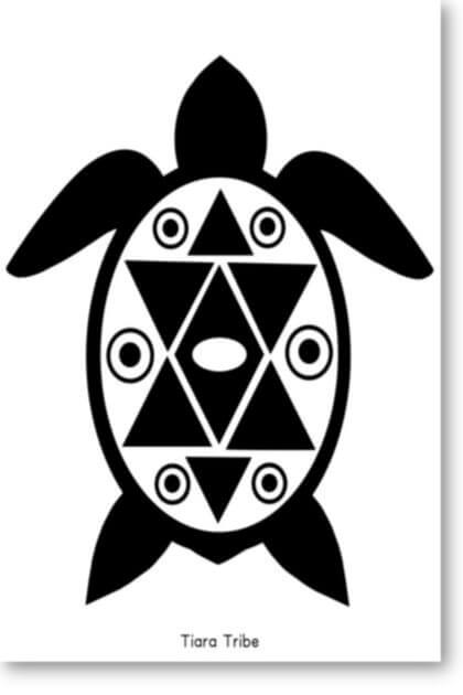 Sea turtle with decorative star shell coloring page