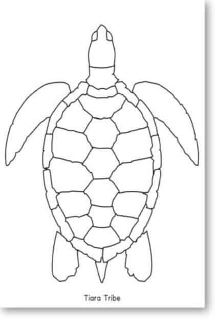 Simple sea turtle coloring page