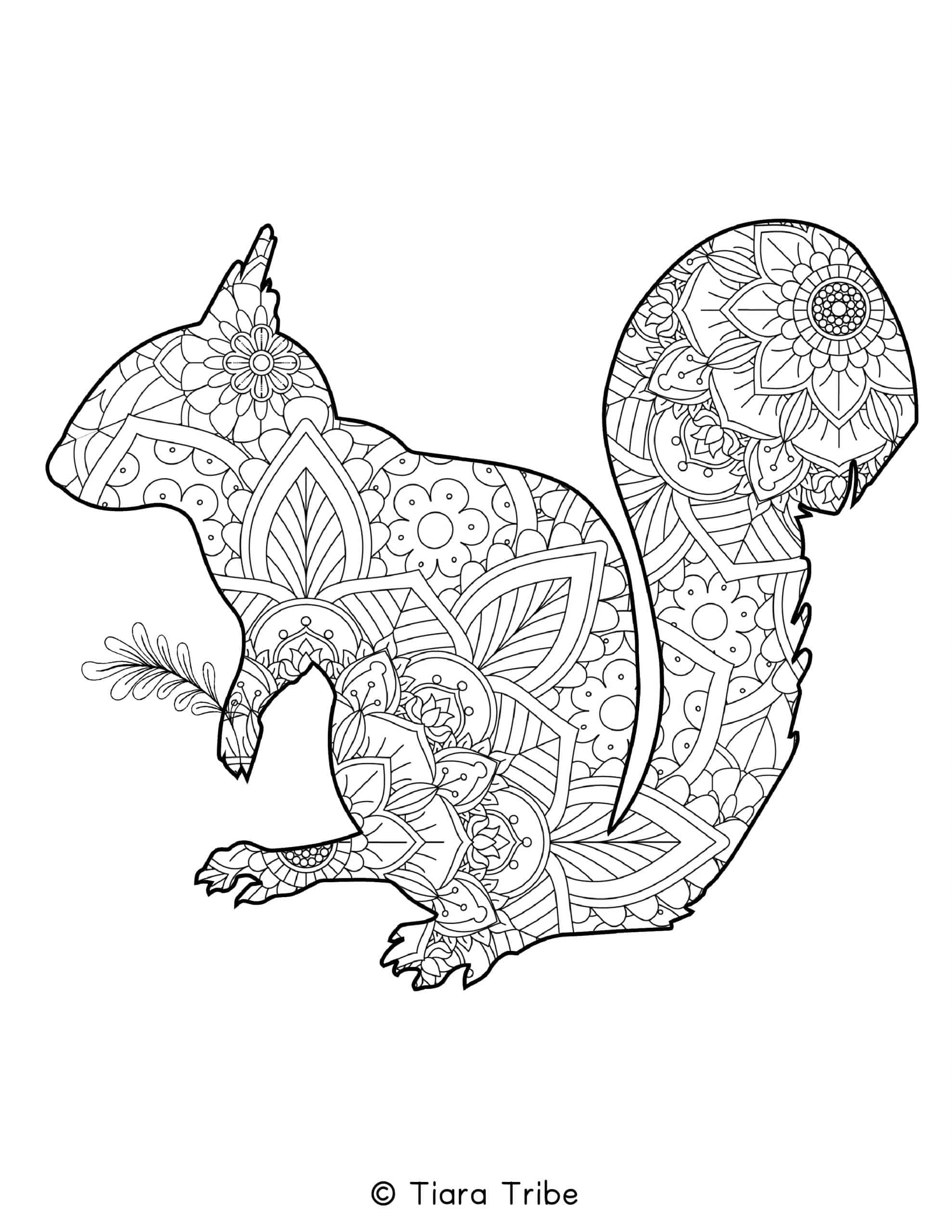 Squirrel Mandala Coloring Page