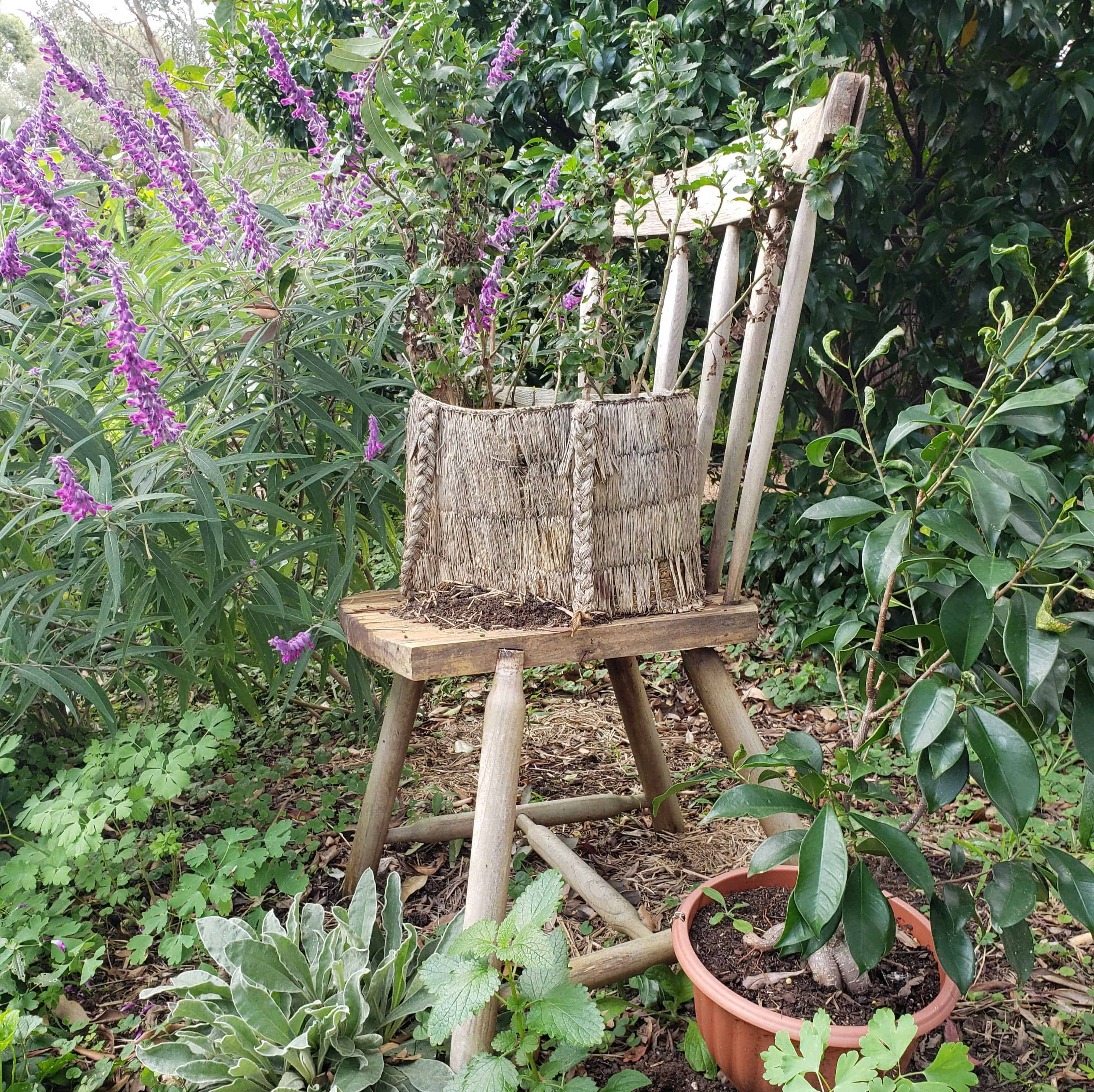 Easy And Free Upcycle Garden Ideas From The Botanical Gardens Tiara Tribe